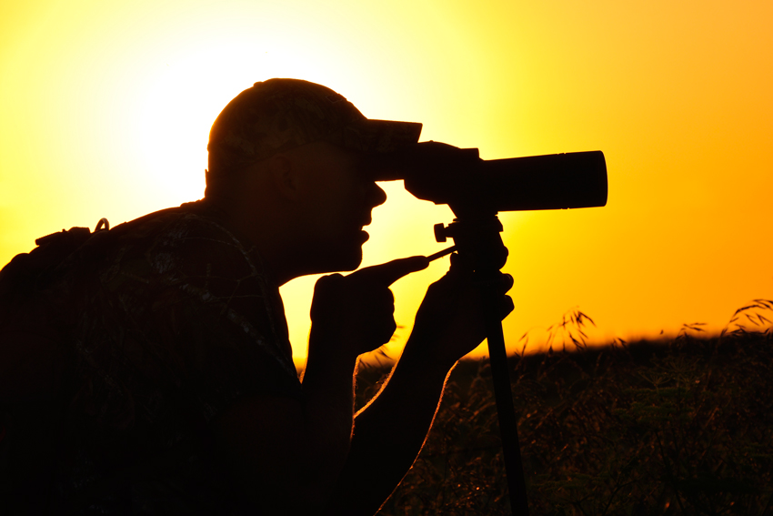 Choose The Best Optics for Southwestern Deer