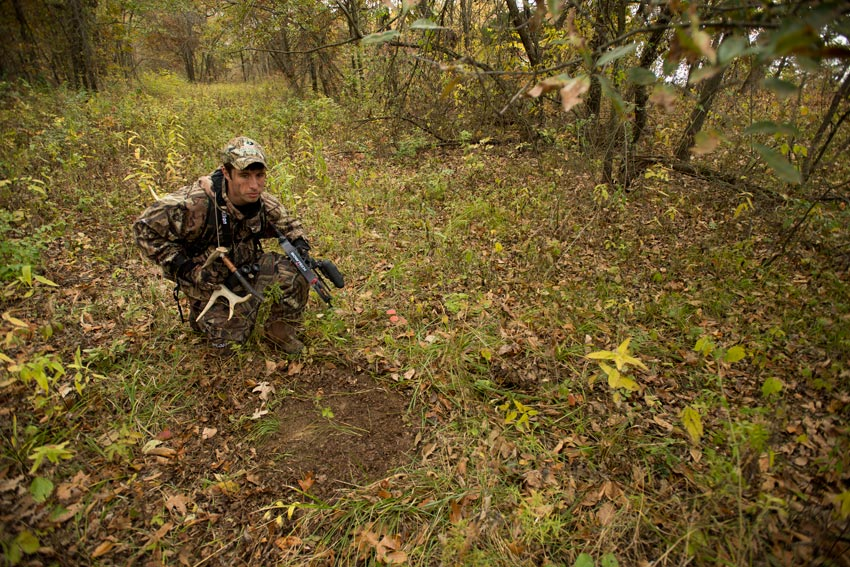Hunting over scrapes is a well-known ploy in the Eastern whitetail woods, but this tactic can work just as well in Columbia black-tail country or while pursuing Western whitetails. More open country and light hunting pressure means bucks are more likely to visit during daylight hours.