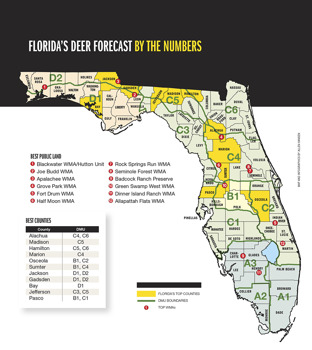 2015 Trophy Deer Forecast: Florida