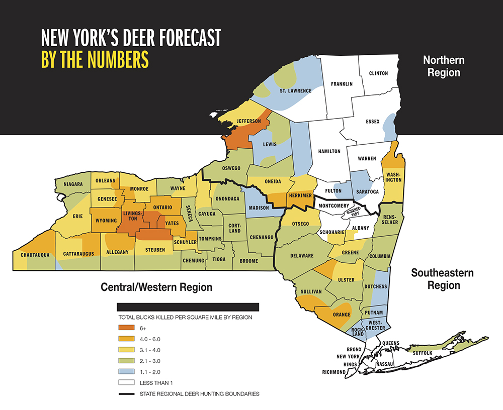 2015 Trophy Deer Forecast: New York