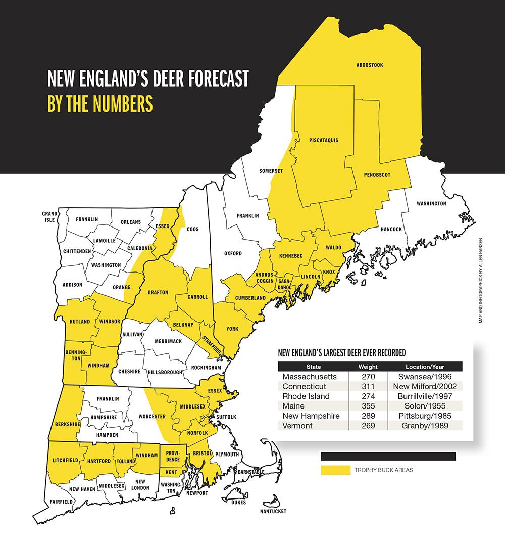 2015 Trophy Deer Forecast: New England