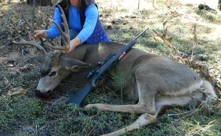 Deer-season-2015
