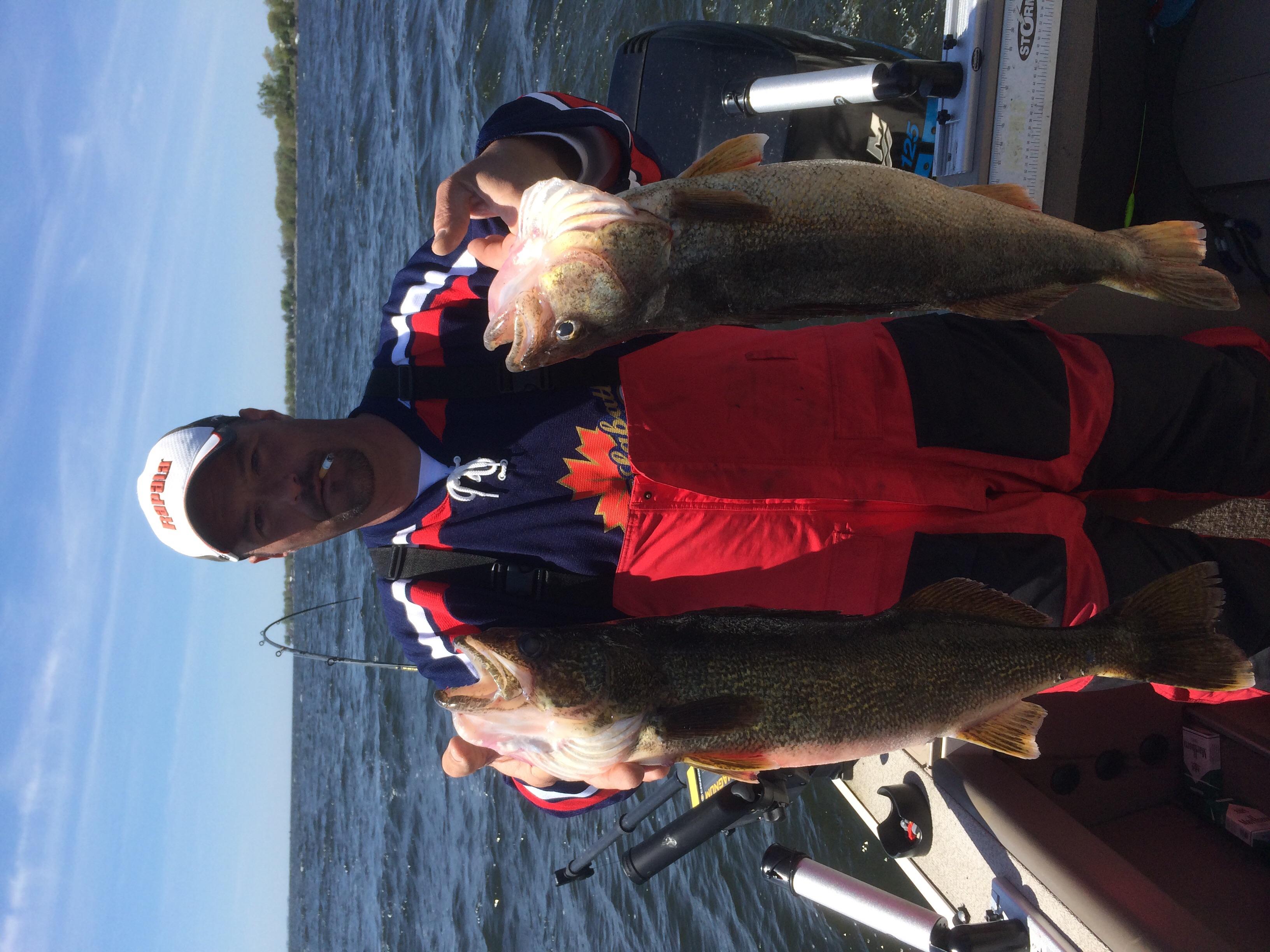 Lake ontario walleye game fish for Wsbtv fish and game