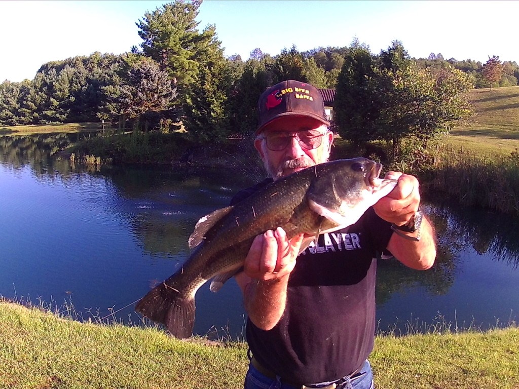 Big bass game fish Best lures for pond fishing