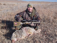 Tips for Hunting Western Coyotes