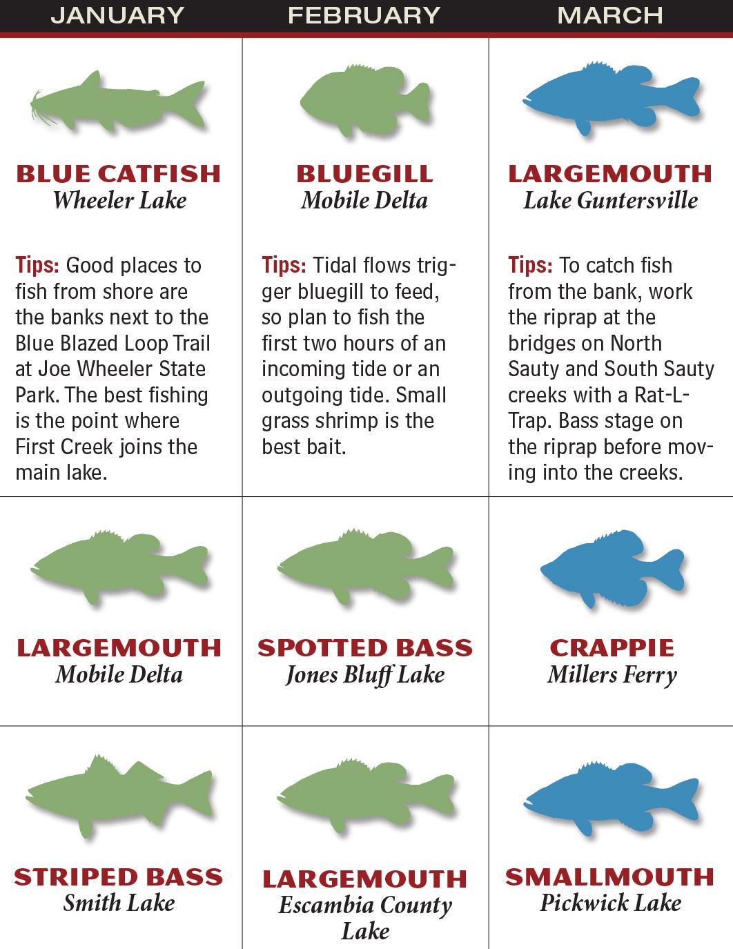 Alabama 2016 fishing calendar game fish for Fishing forecast alabama