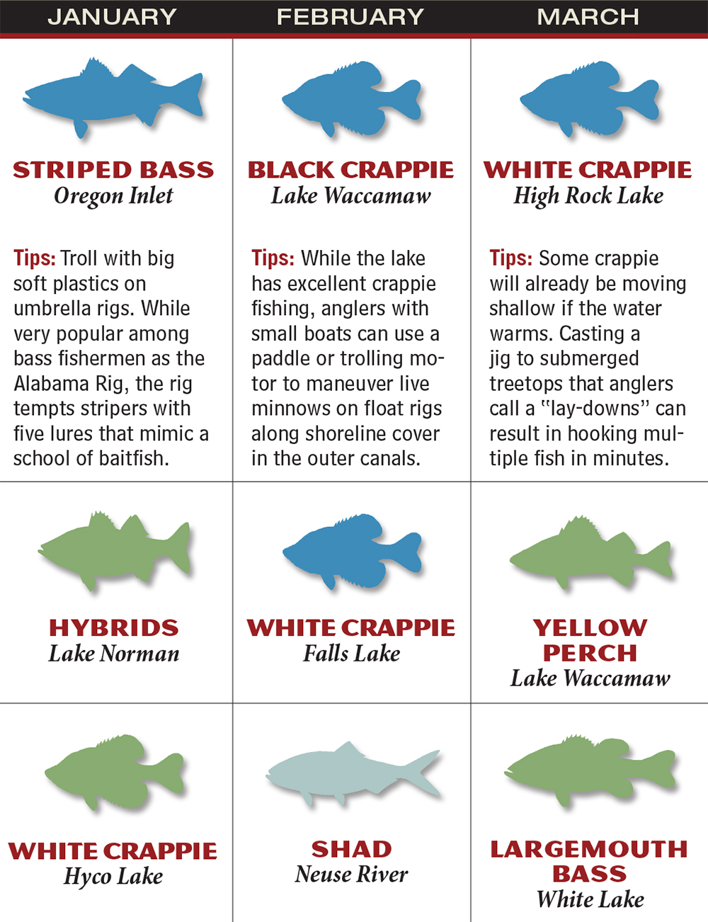 North carolina 2016 fishing calendar game fish for What fish are biting this time of year