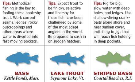 New England offers anglers awesome fish-catching opportunities throughout the year.  Saltwater,