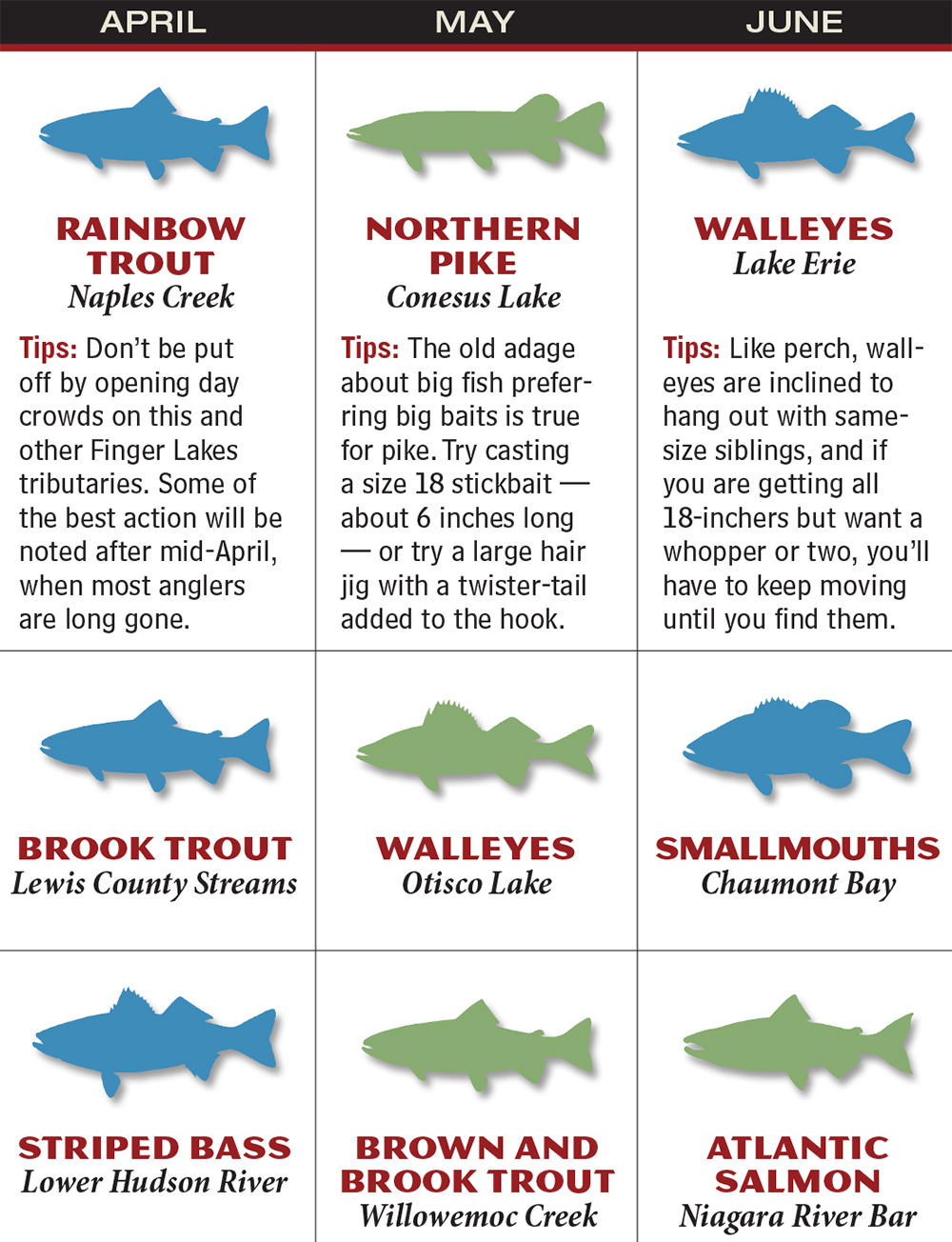 New York 2016 Fishing Calendar