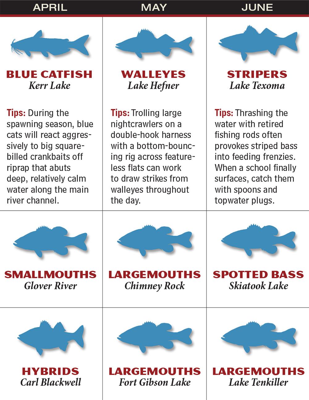 Oklahoma 2016 fishing calendar game fish for Oklahoma fish and game