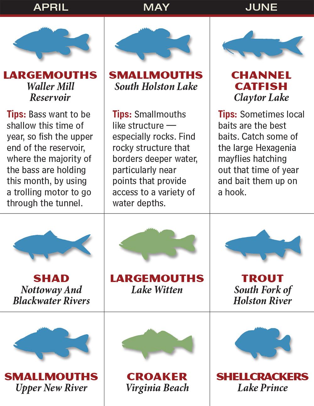 Virginia 2016 Fishing Calendar
