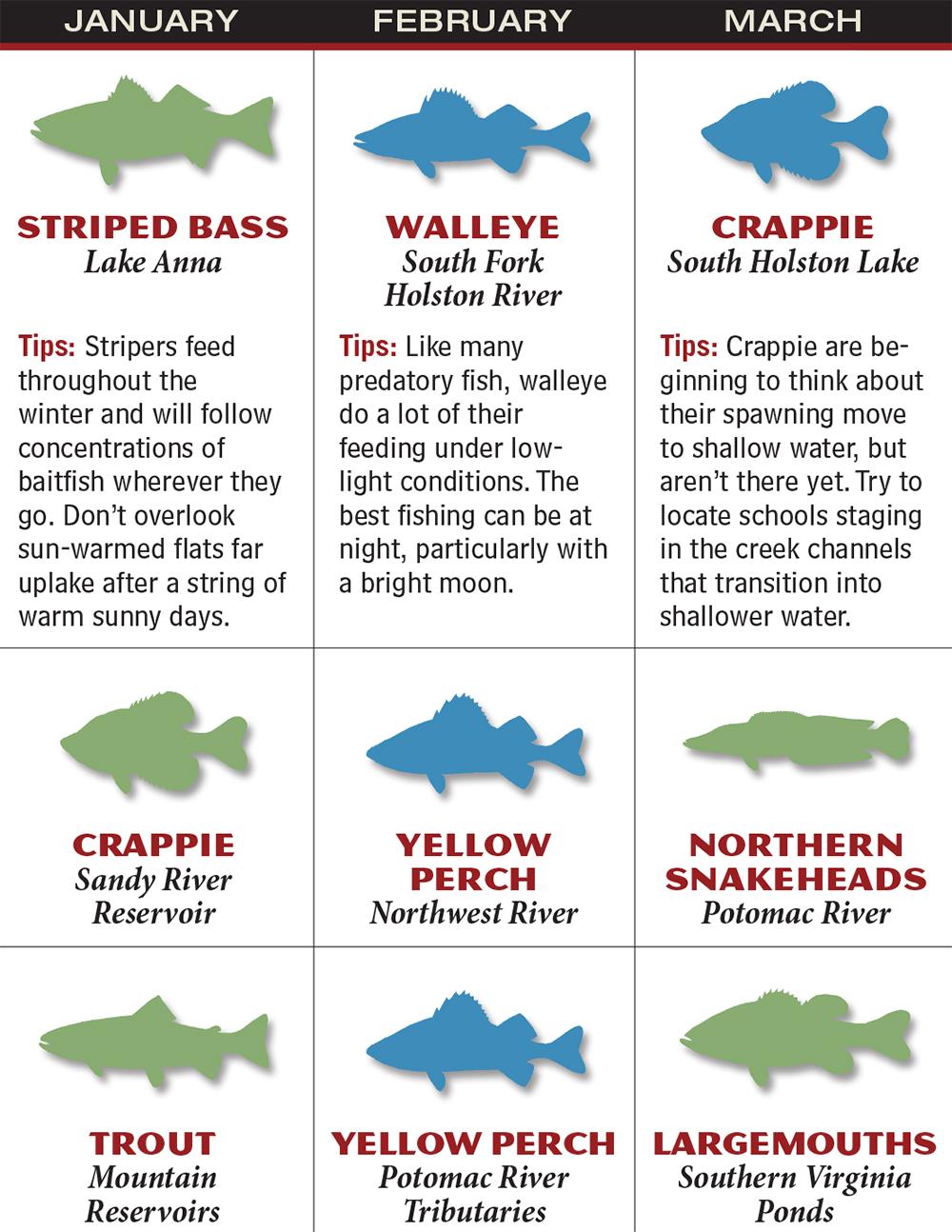 Freshwater fish maryland - Gafp_1602_020_va Jan_mar