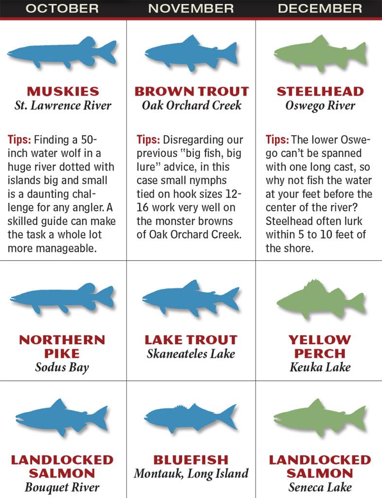 New york 2016 fishing calendar game fish for Fishing forecast calendar