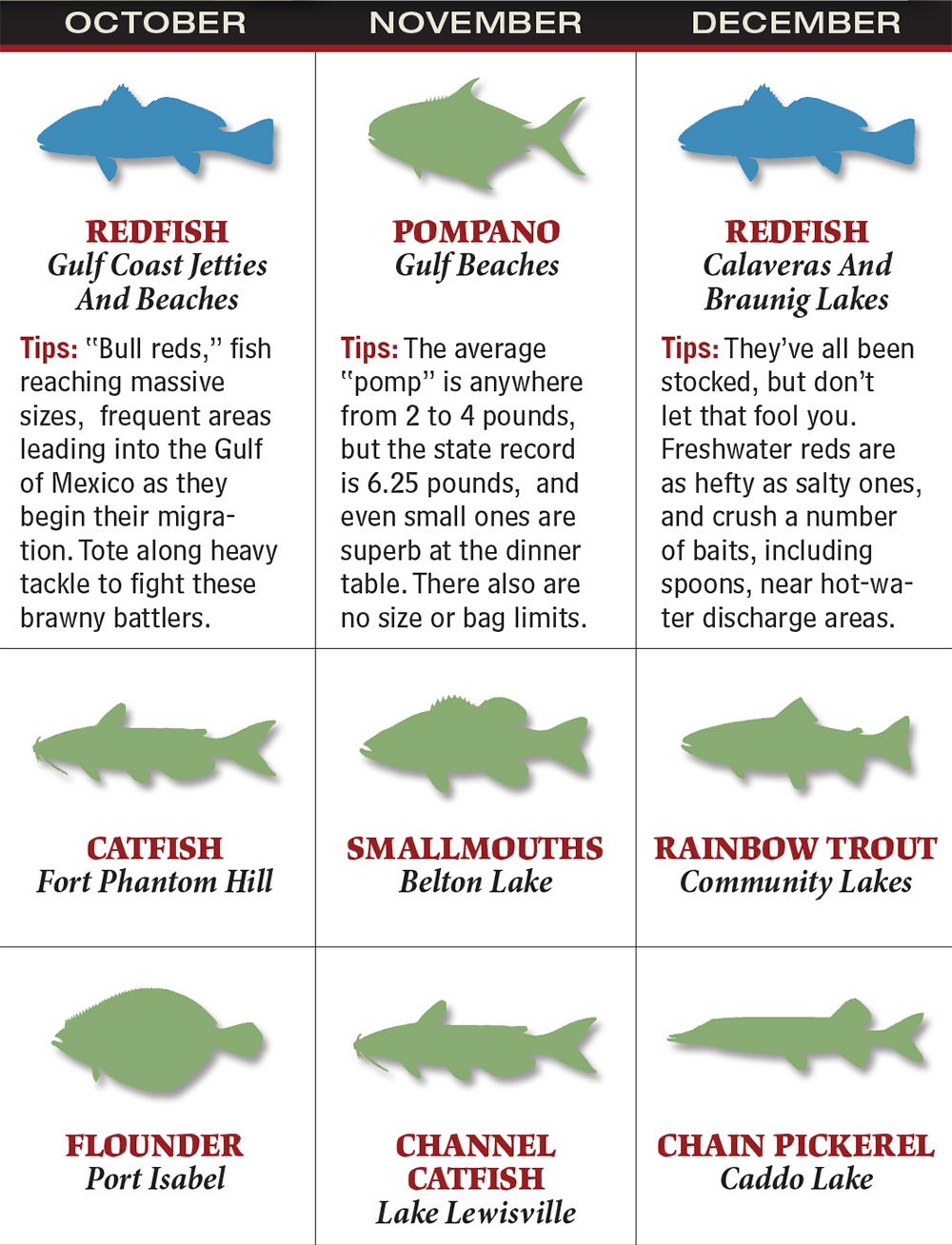Freshwater fish limits - Gafp_1602_021_tx Oct_dec