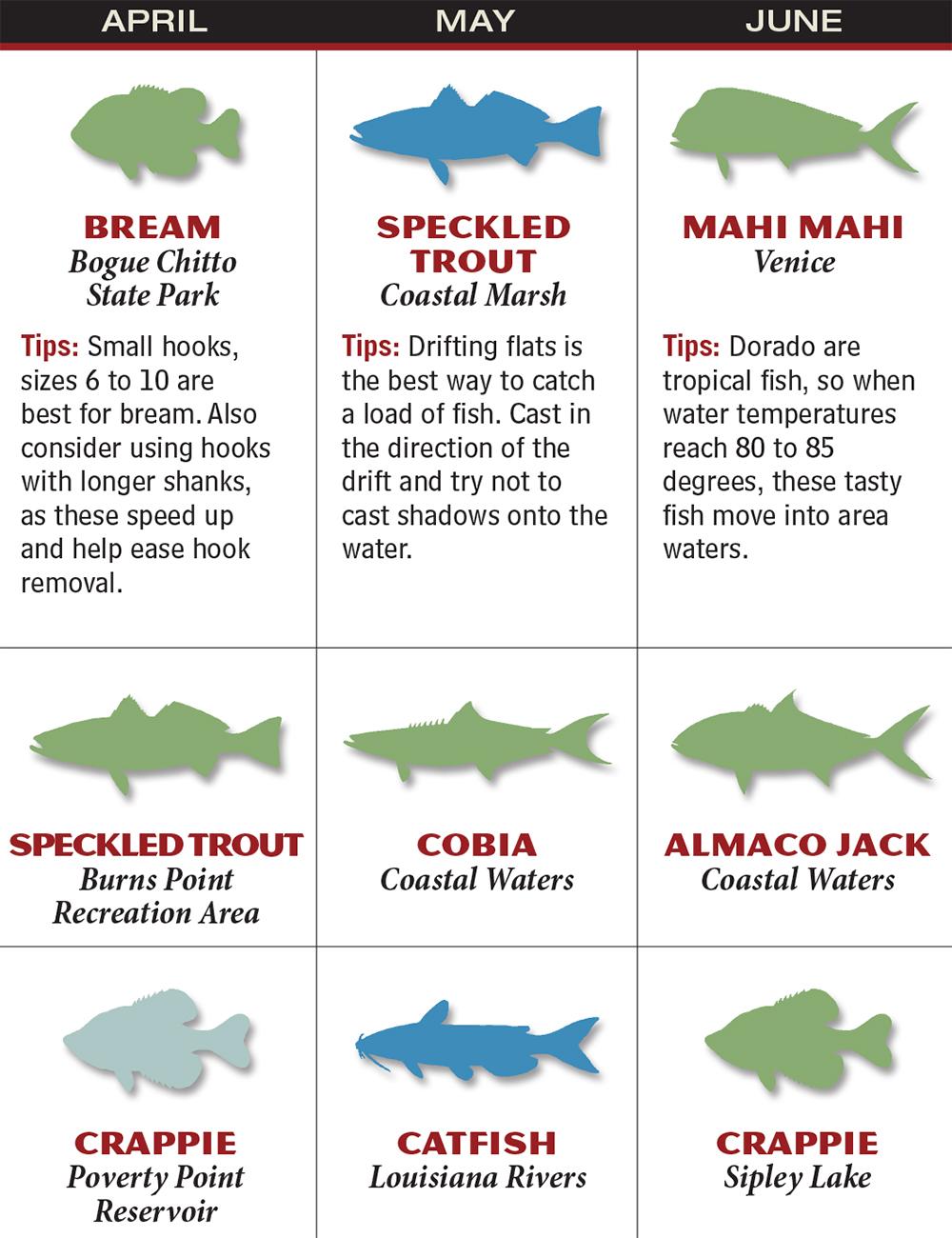Louisiana 2016 Fishing Calendar