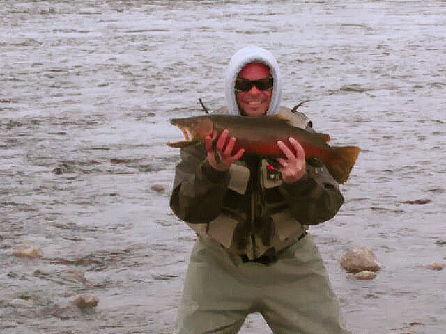 10lb brown miracle mile game fish for Miracle mile fishing