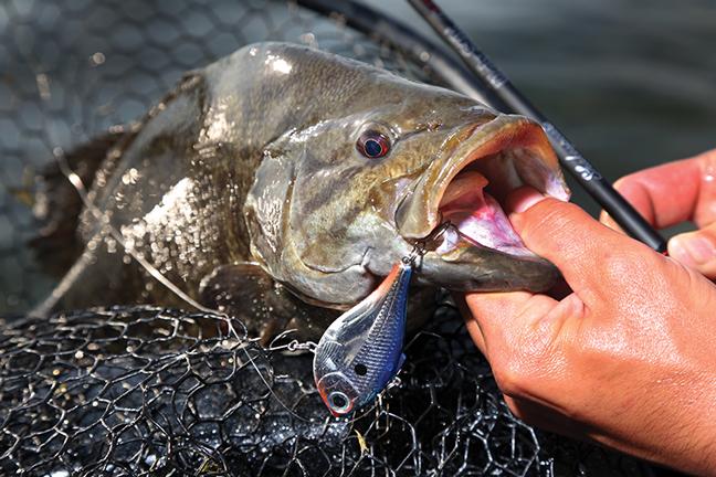 Bass fishing in Iowa