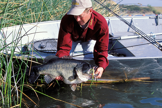 west virginia bass forecast for 2016 game fish