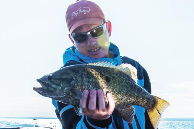 Bass fishing the prespawn