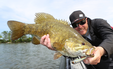 Arizona and New Mexico are full of great waters on which to land big bass. Here are some of the