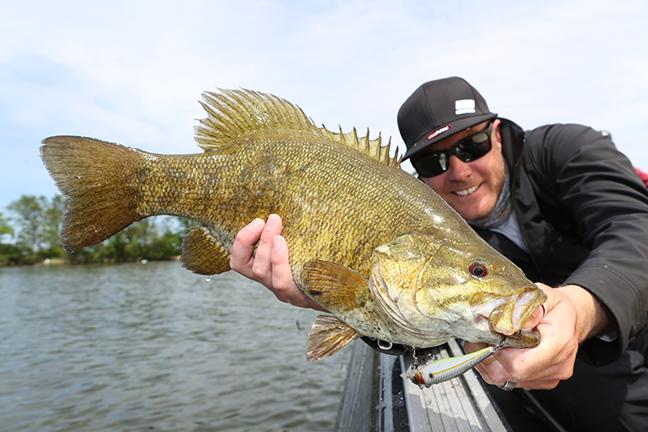 Arizona Bass Fishing