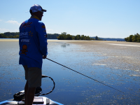 Arkansas Bass Fishing, Bass Fishing in Arkansas