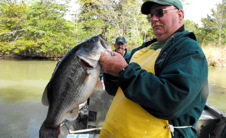 As winter rolls into spring, bass anglers start getting excited for another good year on the