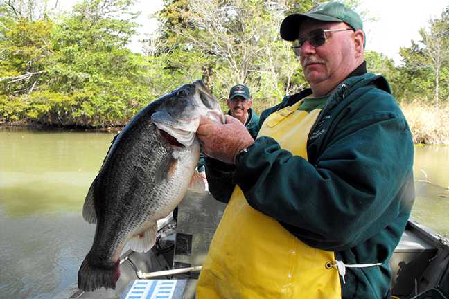 Mississippi bass forecast for 2016 game fish for Ms fishing reports