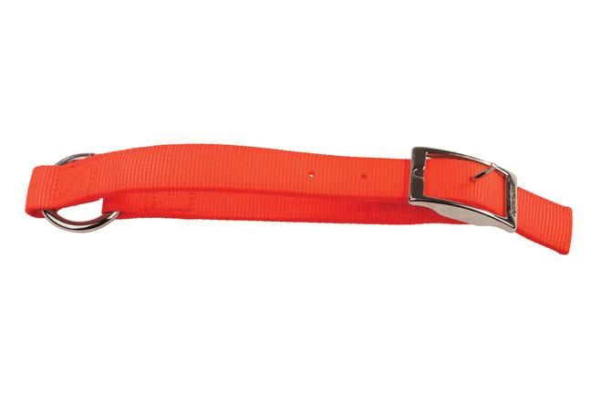 Collar for deer dog training
