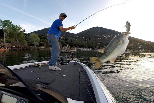 Bass Fishing in South Carolina
