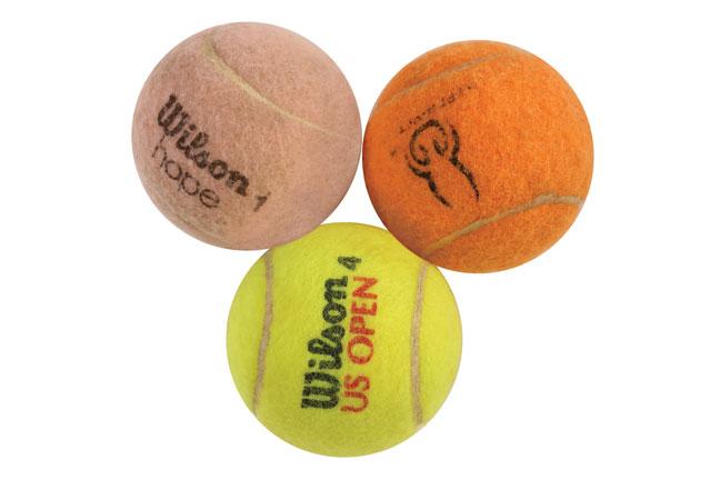 Tennis balls for gun dog training