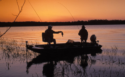 Great bass fishing? We've got it at these locations — and more — around our state!  Rain