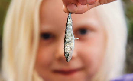 Getting children started fishing early creates memories that will last a lifetime.  From north to
