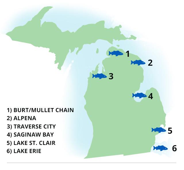 Michigan Fishing: 6 Smallmouth Hotspots