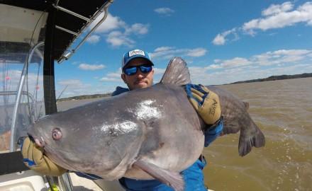 biggest catfish fishing