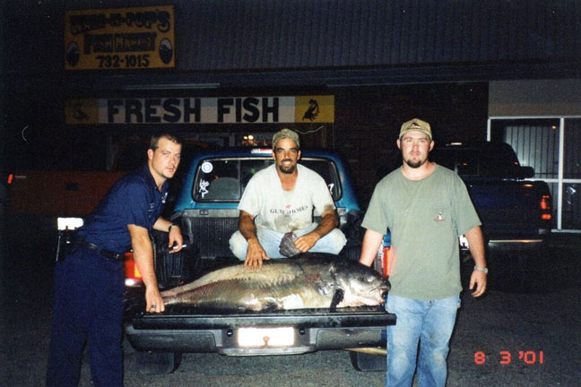 Charles Ashley Jr. Blue Catfish