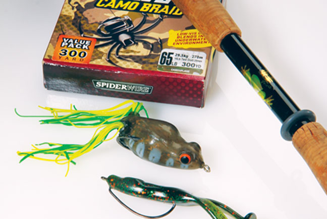 Frog fishing for largemouth bass