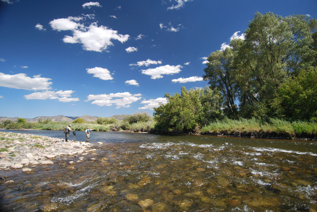 10 Essentials for your Rocky Mountain Fishing Vacation
