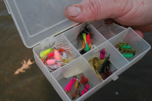 Fly fishermen want to use bright-colored patterns that mimic salmon eggs.