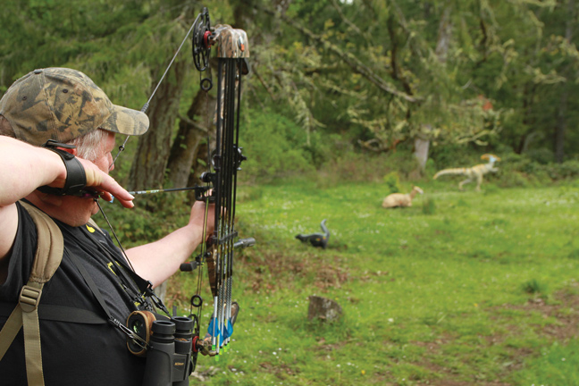 Hone Your Bowhunting Skills with 3-D Targets
