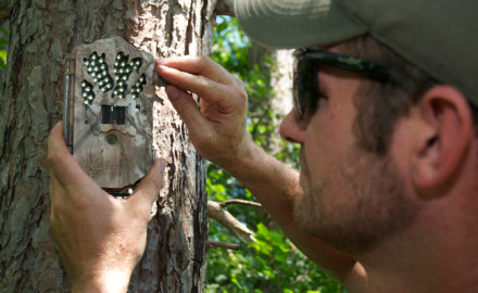 Setting Up Summer Trail Camera Spots