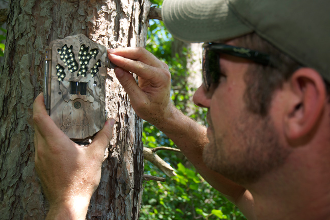 3 Must-Know Trail Camera Setups for Summer Scouting