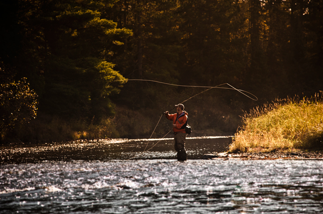 Michigan: Top Waters to Fish for Trout