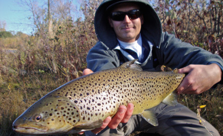 Michigan produces some monster brown trout with storied waters, like the Au Sable, being ground zero when the mayfly hatch is on. Credit: Photo by Aaron Peterson