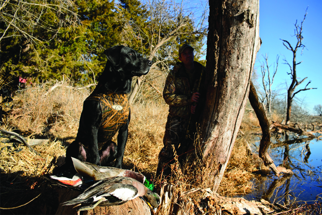 Hunters & Dogs: A Special Bond