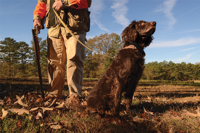 Little Hunter&Dog