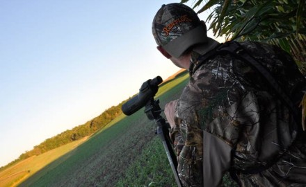 glassing-summer-bucks-the-right-way