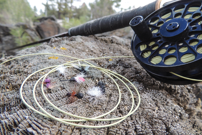 Ant Trout Lures