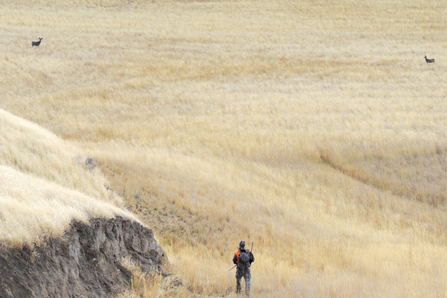 Elk Hunting Mistake