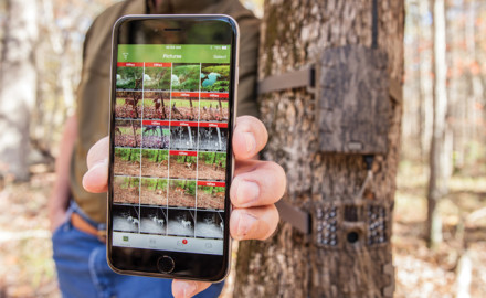 Wireless Trailcam Feature